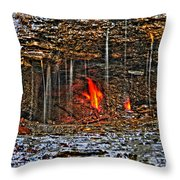 0004 Natural Elements Throw Pillow