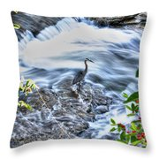 0005 Blue Heron At Glen Falls Williamsville Ny Throw Pillow