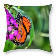 001 Making Things New Via The Butterfly Series Throw Pillow