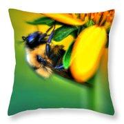 001 Sleeping Bee Throw Pillow