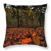 0013 Letchworth State Park Series Throw Pillow