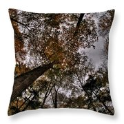 0014 Letchworth State Park Series Throw Pillow