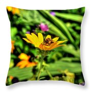 002 Busy Bee Series Throw Pillow