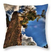002 Reaching For The Sky Throw Pillow