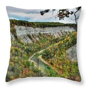 0021 Letchworth State Park Series   Throw Pillow