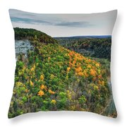 0025 Letchworth State Park Series   Throw Pillow