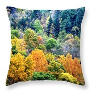 0026 Letchworth State Park Series   Throw Pillow