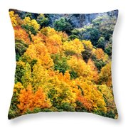 0027 Letchworth State Park Series   Throw Pillow