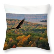 003 Letchworth State Park Series  Throw Pillow