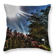 003 Summer Sunrise Series Throw Pillow