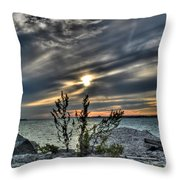 004 In Harmony With Nature Series Throw Pillow
