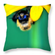 004 Sleeping Bee Series Throw Pillow