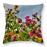 004 Summer Air Series Throw Pillow