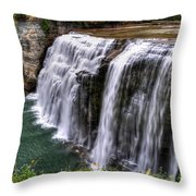 0043 Letchworth State Park Series  Throw Pillow