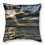 005 In Harmony With Nature Series Throw Pillow