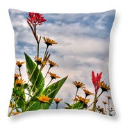 005 Summer Air Series Throw Pillow