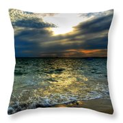 006 In Harmony With Nature Series Throw Pillow
