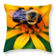 006 Sleeping Bee Series Throw Pillow
