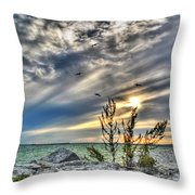 008 In Harmony With Nature Series Throw Pillow