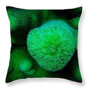 Green Coral Throw Pillow