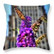 009 Making Things New Via The Butterfly Series Throw Pillow