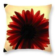 00951 Throw Pillow