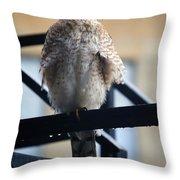 01 Falcon  Throw Pillow