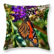 011 Making Things New Via The Butterfly Series Throw Pillow