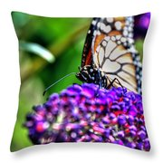 012 Making Things New Via The Butterfly Series Throw Pillow