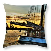 016 Empire Sandy Series Throw Pillow