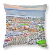 020 Series Of Buffalo Ny Via Birds Eye Adams Mark Throw Pillow