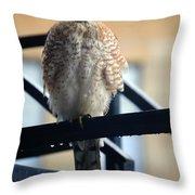 03 Falcon Throw Pillow