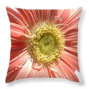 0620a-003 Throw Pillow