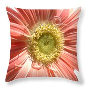 0620a-004 Throw Pillow