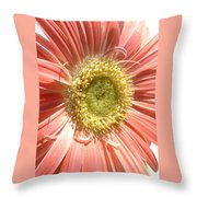 0620a-005 Throw Pillow