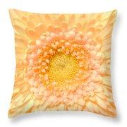 0625c Throw Pillow