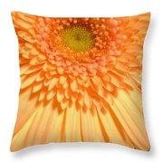 0627c3 Throw Pillow