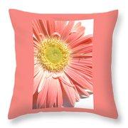 0628a-002 Throw Pillow