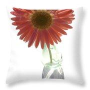 0645a2-1 Throw Pillow