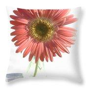 0653a1-2 Throw Pillow