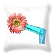 0661a-006 Throw Pillow