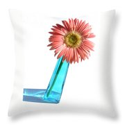 0661a1-2 Throw Pillow