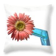 0662a-2 Throw Pillow