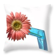 0662a Throw Pillow