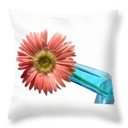 0663a1-2 Throw Pillow