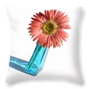 0663a2 Throw Pillow