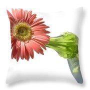 0666a-1 Throw Pillow