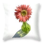 0667a-2 Throw Pillow