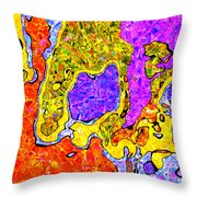 0673 Abstract Thought Throw Pillow