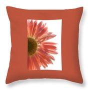 0676a-6 Throw Pillow
